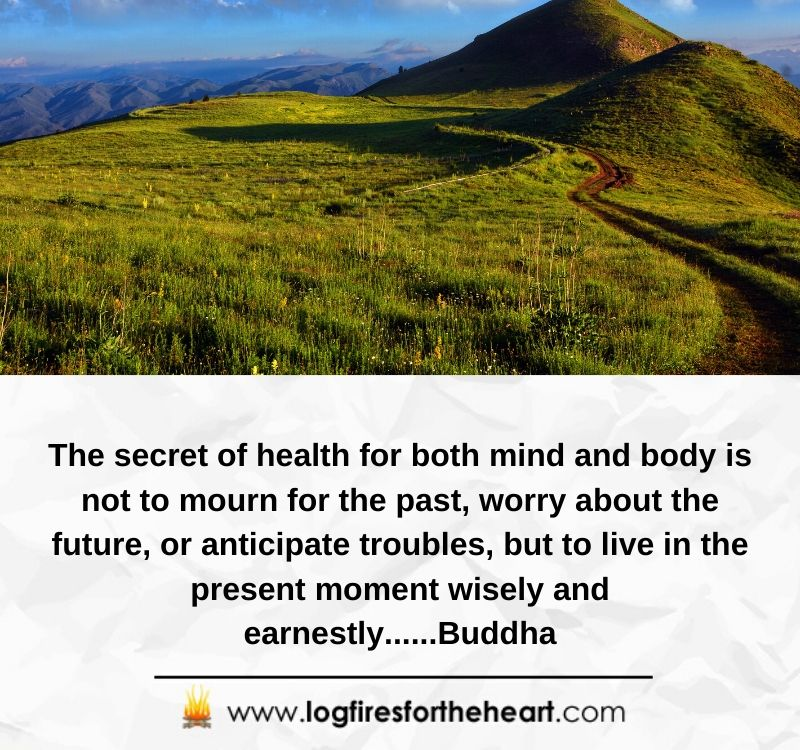 The secret of health for both mind and body is not to mourn for the past, worry about the future, or anticipate troubles, but to live in the present moment wisely and earnestly......Buddha