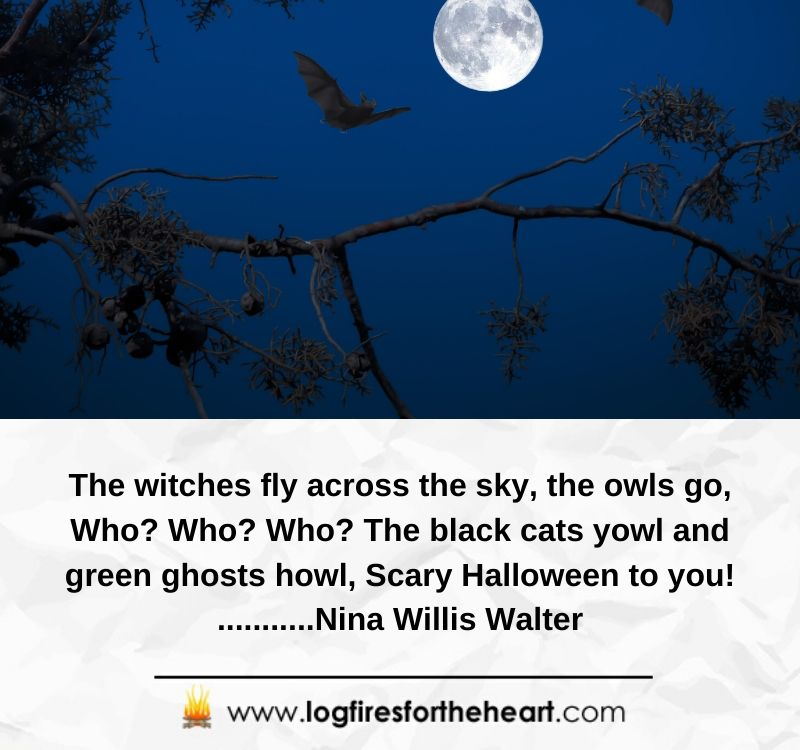 The witches fly across the sky, the owls go, Who? Who? Who? The black cats yowl and green ghosts howl, Scary Halloween to you! ...........Nina Willis Walter