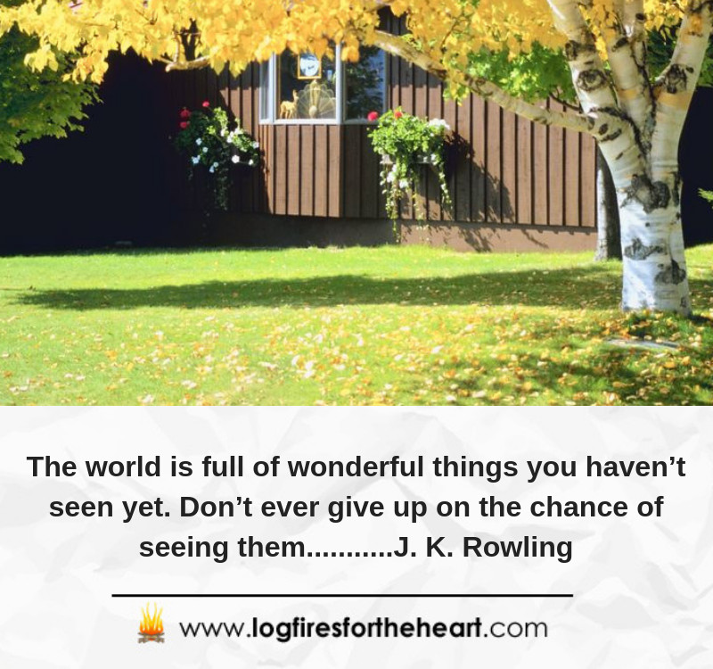 The world is full of wonderful things you haven't seen yet. Don't ever give up on the chance of seeing them...........J. K. Rowling