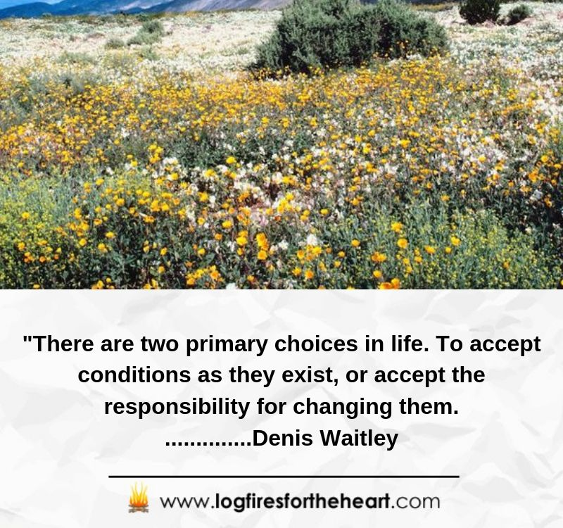 There are two primary choices in life: to accept conditions as they exist, or accept the responsibility for changing them.................Denis Waitley