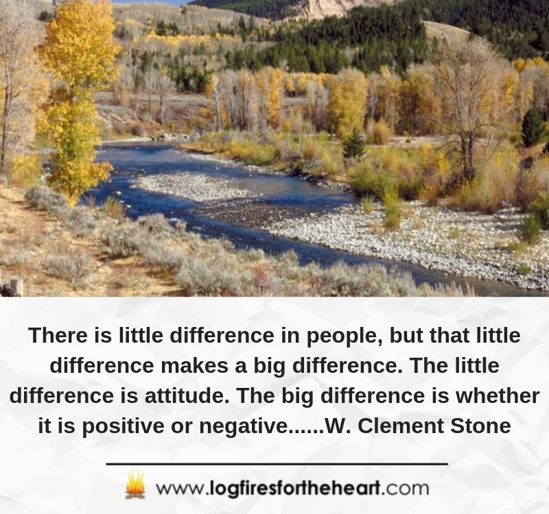 There is little difference in people, but that little difference makes a big difference. The little difference is attitude. The big difference is whether it is positive or negative......W. Clement Stone