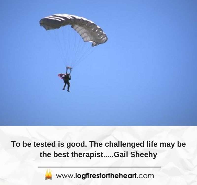 To be tested is good. The challenged life may be the best therapist.....Gail Sheehy.