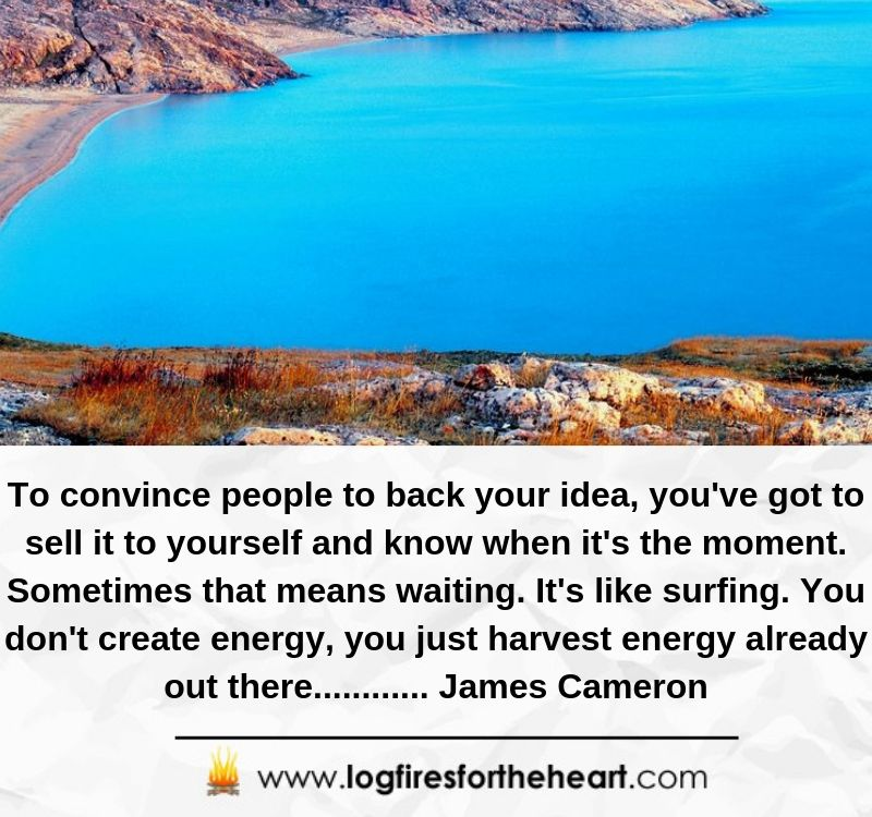 To convince people to back your idea, you've got to sell it to yourself and know when it's the moment. Sometimes that means waiting. It's like surfing. You don't create energy, you just harvest energy already out there............ James Cameron