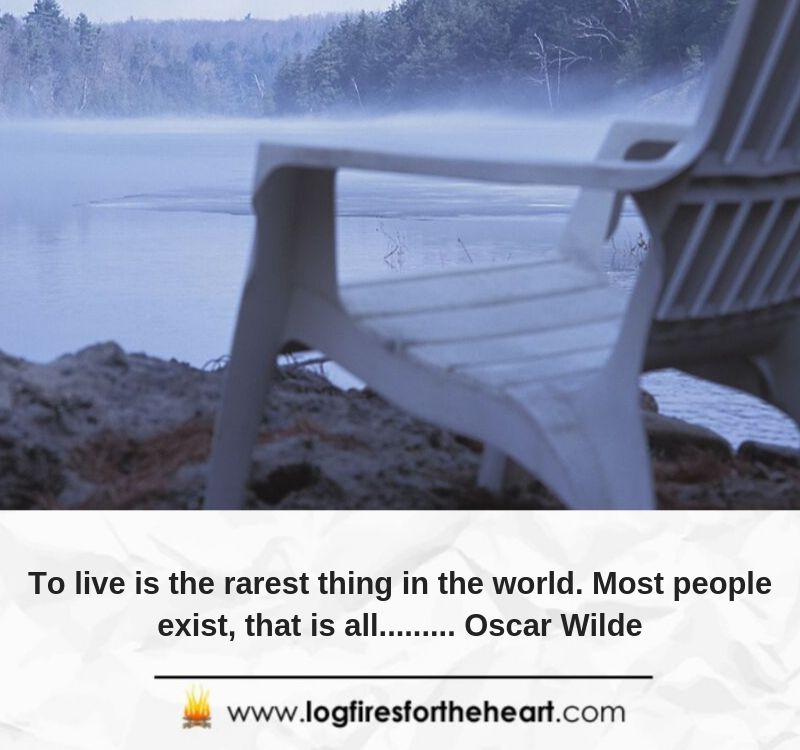 To live is the rarest thing in the world. Most people exist, that is all......... Oscar Wilde