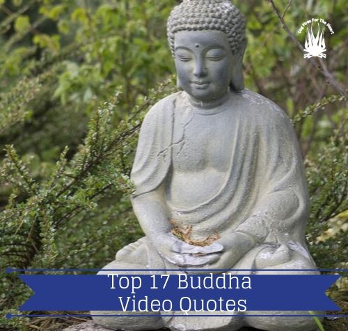 Top 17 Buddha Video Quotes For Living Today