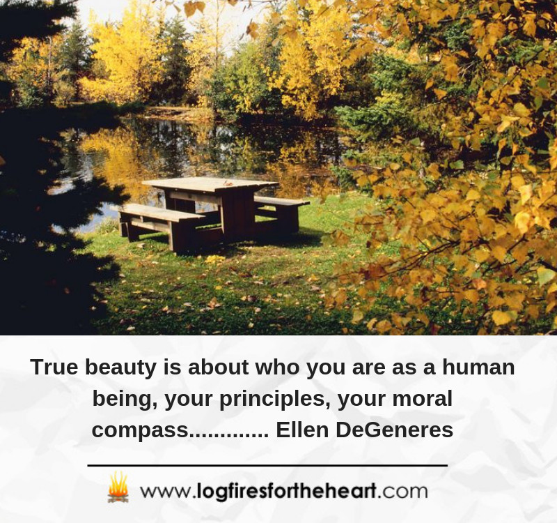 True beauty is about who you are as a human being, your principles, your moral compass............. Ellen DeGeneres