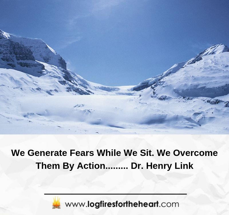 We Generate Fears While We Sit. We Overcome Them By Action......... Dr. Henry Link