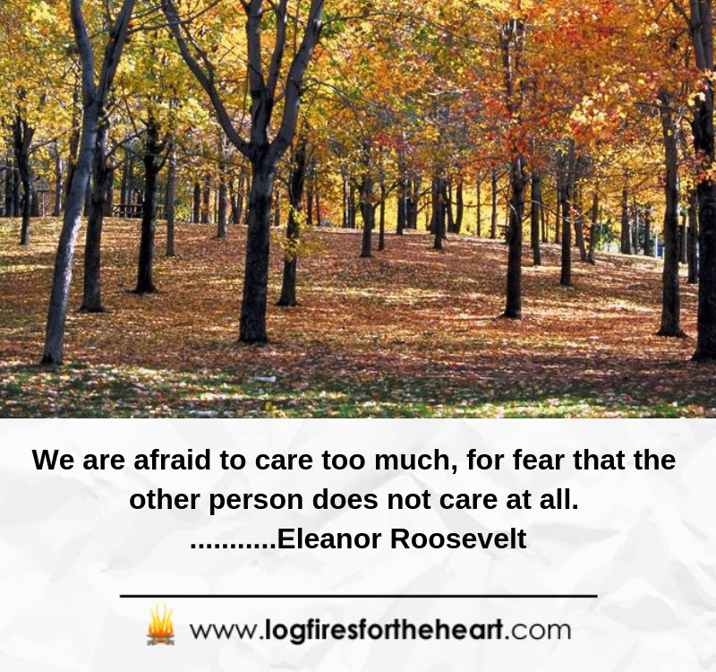 We are afraid to care too much, for fear that the other person does not care at all. ...........Eleanor Roosevelt