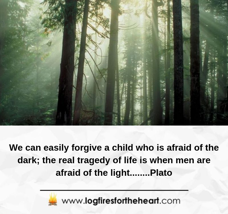 We can easily forgive a child who is afraid of the dark. The real tragedy of life is when men are afraid of the light........Plato