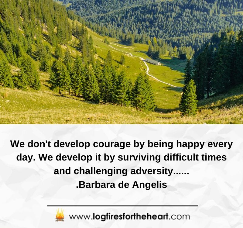 We don't develop courage by being happy every day. We develop it by surviving difficult times and challenging adversity.......Barbara de Angelis