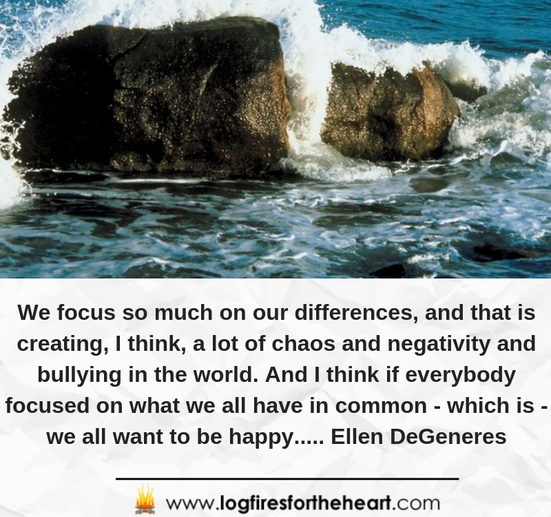 We focus so much on our differences, and that is creating, I think, a lot of chaos and negativity and bullying in the world. And I think if everybody focused on what we all have in common, which is, we all want to be happy........Ellen DeGeneres