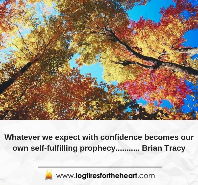 Whatever we expect with confidence becomes our own self-fulfilling prophecy........... Brian Tracy