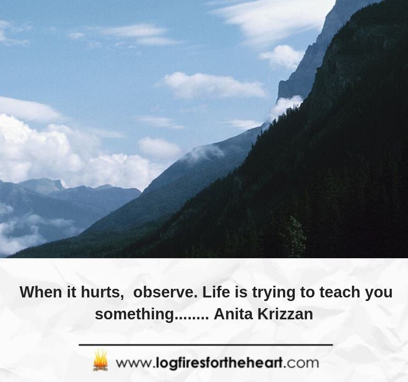 When it hurts, observe. Life is trying to teach you something........ Anita Krizzan