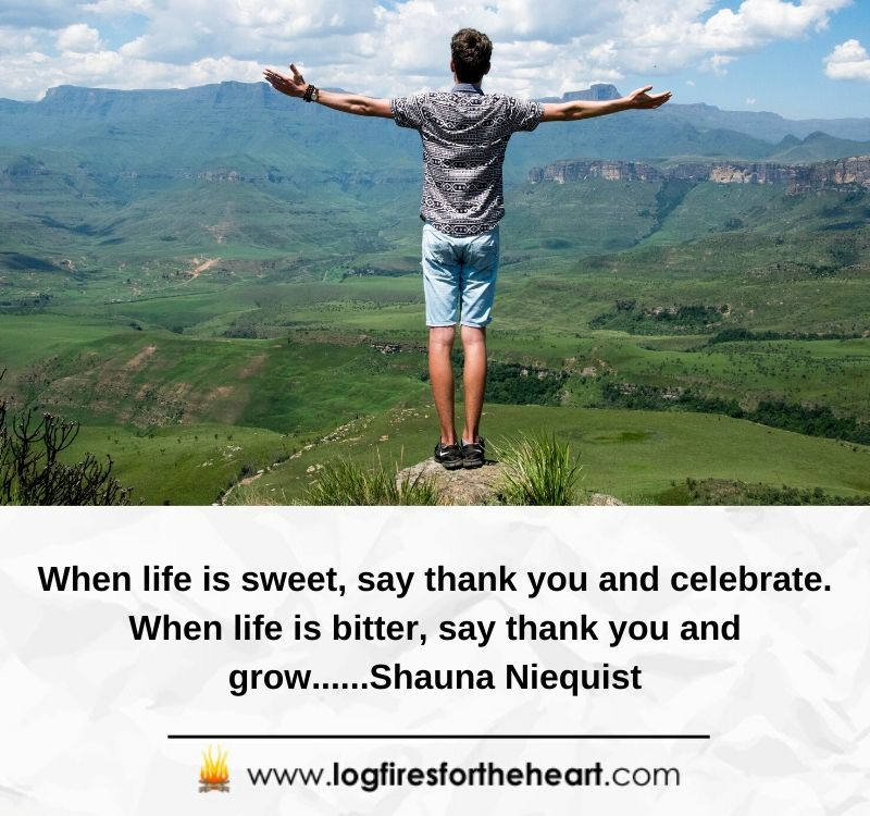 When life is sweet, say thank you and celebrate. When life is bitter, say thank you and grow......Shauna Niequist