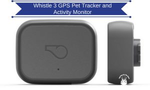Whistle 3 GPS Pet Tracker and Activity Monitor: - Put Your Dog's Safety First
