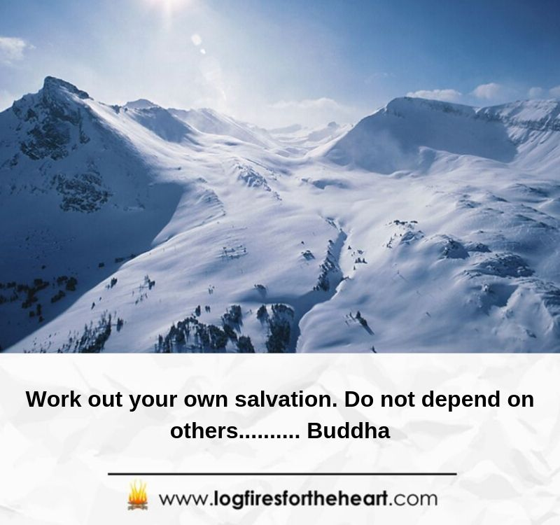 Work out your own salvation. Do not depend on others.......... Buddha