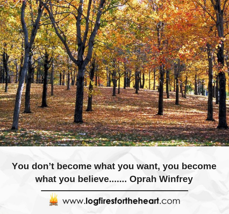 You don't become what you want, you become what you believe....... Oprah Winfrey