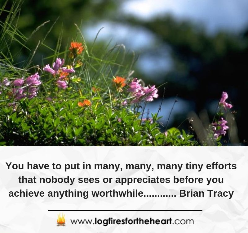 You have to put in many, many, many tiny efforts that nobody sees or appreciates before you achieve anything worthwhile............ Brian Tracy