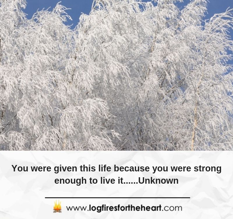 You were given this life because you were strong enough to live it......Unknown