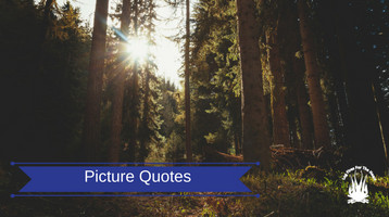 Picture Quotes For Dog Lovers - Log Fires For The Heart