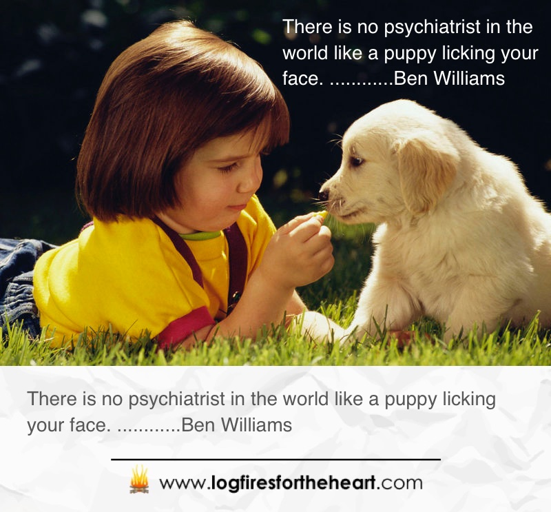 Inspirational Picture Quotes For Dog Lovers